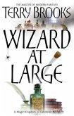 Wizard At Large (eBook, ePUB)