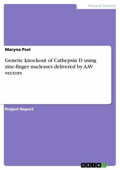 Genetic knockout of Cathepsin D using zinc-finger nucleases delivered by AAV vectors