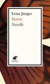 Sturm (eBook, ePUB)