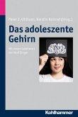 Das adoleszente Gehirn (eBook, PDF)