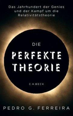 Die perfekte Theorie - Ferreira, Pedro G.