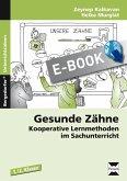 Gesunde Zähne (eBook, PDF)