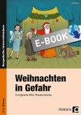 Weihnachten in Gefahr (eBook, PDF)