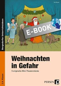 Weihnachten in Gefahr (eBook, PDF) - Hesse, Ina