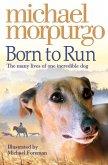 Born to Run (eBook, ePUB)