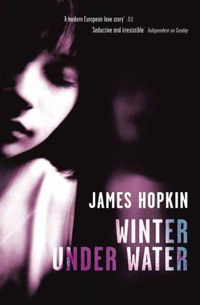 Winter Under Water (eBook, ePUB) - Hopkin, James