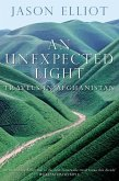 An Unexpected Light (eBook, ePUB)