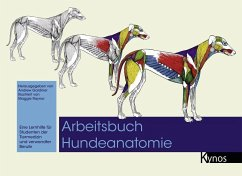 Arbeitsbuch Hundeanatomie