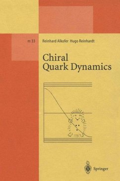 Chiral Quark Dynamics - Alkofer, Reinhard; Reinhardt, Hugo