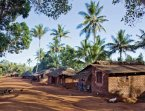 Healthy Homes in Tropical Zones