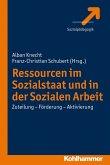 Ressourcen im Sozialstaat und in der Sozialen Arbeit (eBook, PDF)