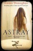 Astray (eBook, ePUB)