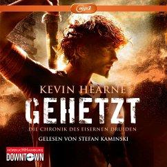 Gehetzt / Die Chronik des Eisernen Druiden Bd.1 (1 MP3-CDs) - Hearne, Kevin