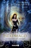 Hexenjagd / Schwestern des Mondes Bd.13