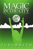 Magic in the City (eBook, ePUB)
