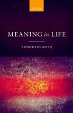 Meaning in Life (eBook, PDF)