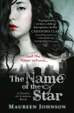 The Name of the Star (Shades of London, Book 1) (eBook, ePUB)