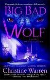Big Bad Wolf (eBook, ePUB)