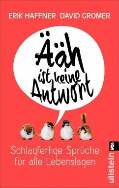 Ääh ist keine Antwort (eBook, ePUB) - Haffner, Erik; Gromer, David