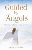 Guided By Angels: There Are No Goodbyes, My Tour of the Spirit World (eBook, ePUB)