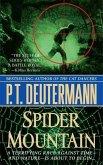 Spider Mountain (eBook, ePUB)
