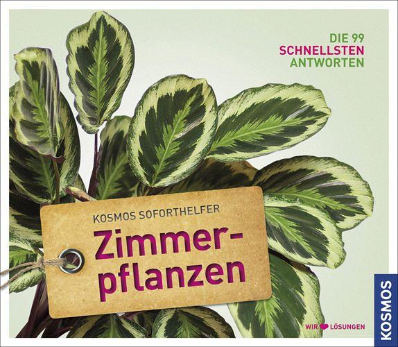 Soforthelfer zimmerpflanzen von folko kullmann buch for Shop zimmerpflanzen