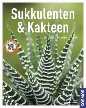 book advances in superconductivity vi proceedings of the 6th international symposium on superconductivity iss 93 october 2629 1993 hiroshima