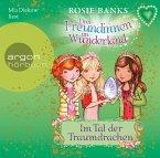 Im Tal der Traumdrachen / Drei Freundinnen im Wunderland Staffel 2 Bd.3 (1 Audio-CD)