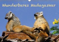 Wunderbares Madagaskar (Wandkalender immerwährend DIN A3 quer)