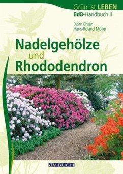 Nadelgehöze und Rhododendron - Ehsen, Björn; Müller, Hans-Roland