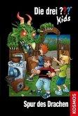 Spur des Drachen / Die drei Fragezeichen-Kids Bd.58