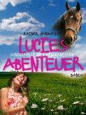 Lucies Abenteuer - Sommerfest mit Hindernissen (eBook, ePUB)