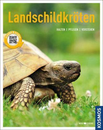 Landschildkröten - Rogner, Manfred