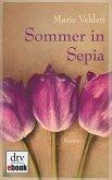 Sommer in Sepia (eBook, ePUB)