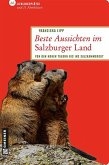 Beste Aussichten im Salzburger Land (eBook, PDF)