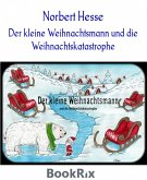 Der kleine Weihnachtsmann und die Weihnachtskatastrophe (eBook, ePUB)