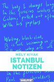 Istanbul Notizen (eBook, ePUB)