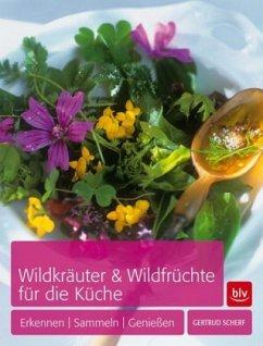 Wildkräuter & Wildfrüchte für die Küche - Scherf, Gertrud