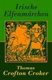 Irische Elfenmärchen (eBook, ePUB)