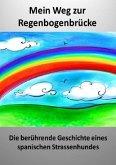 Mein Weg zur Regenbogenbrücke