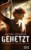 Gehetzt / Die Chronik des Eisernen Druiden Bd.1