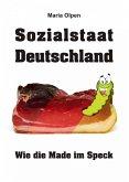 Sozialstaat Deutschland (eBook, ePUB)