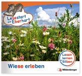 Wiese erleben / Lesestart mit Eberhart - Lesestufe 2 H.2