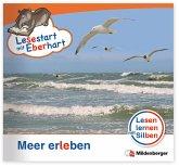 Meer erleben / Lesestart mit Eberhart - Lesestufe 2 H.3