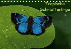 Tropische Schmetterlinge (Tischkalender immerwährend DIN A5 quer)