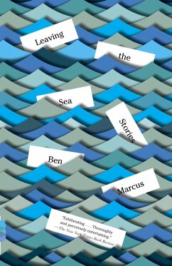 Leaving the Sea (eBook, ePUB) - Marcus, Ben