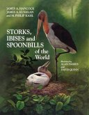 Storks, Ibises and Spoonbills of the World (eBook, PDF)
