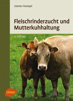 Fleischrinderzucht und Mutterkuhhaltung - Hampel, Günter