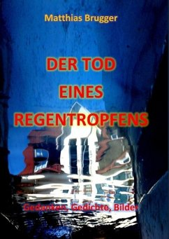 Der Tod eines Regentropfens (eBook, ePUB)