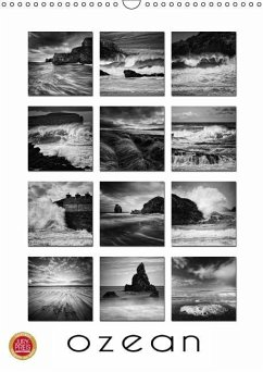 Ozean (Wandkalender immerwährend DIN A3 hoch)